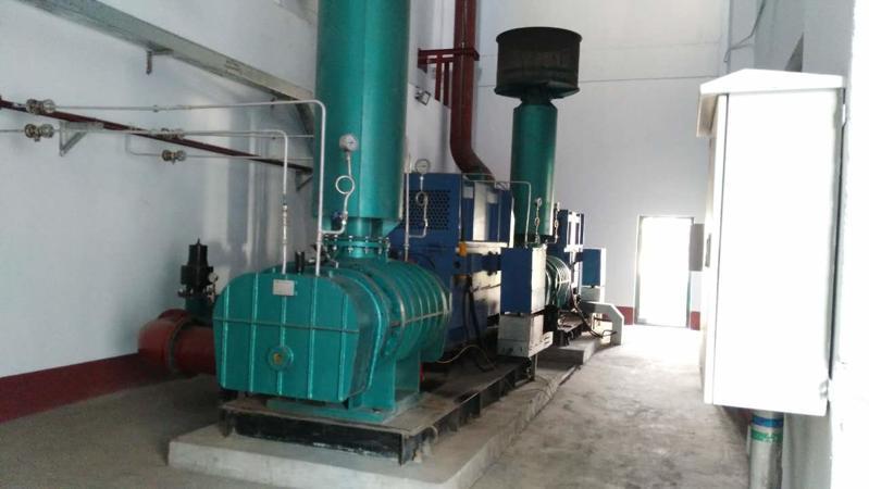 阳泉煤业集团合作项目三叶罗茨鼓风机使用现场