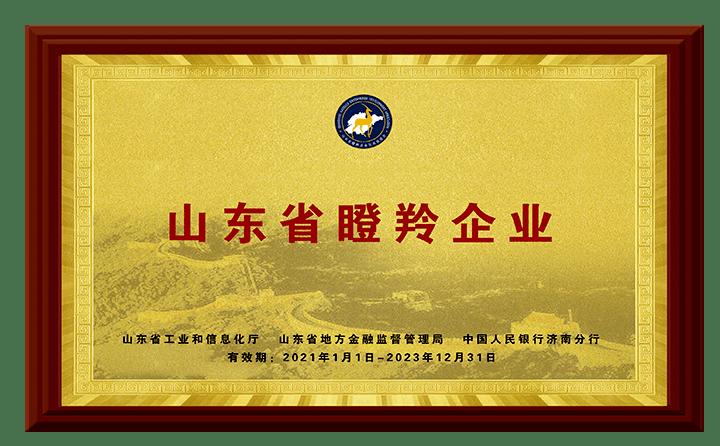 丰源荣获山东省瞪羚企业